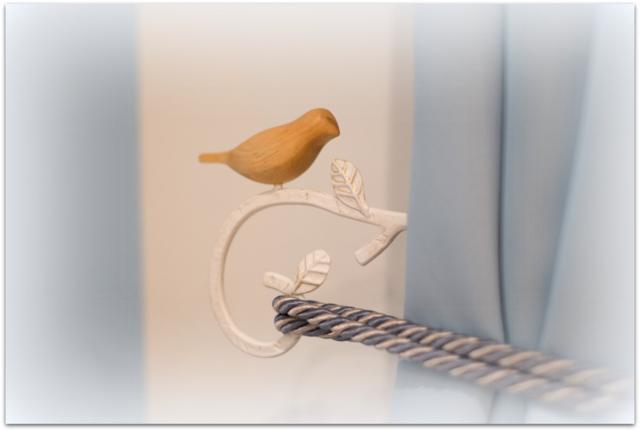 青森県 弘前市 ヨガ スタジオ 教室 リライト ホームページ 写真 撮影 出張カメラマン