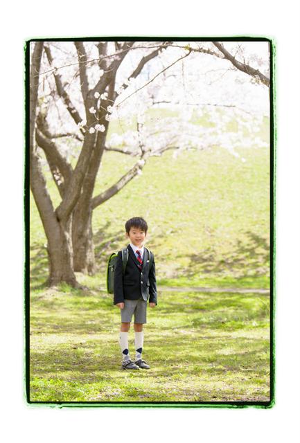 青森県 五所川原市 出張カメラマン 小学校 入学記念 記念写真 写真撮影 キッズロケーション 桜 家族写真