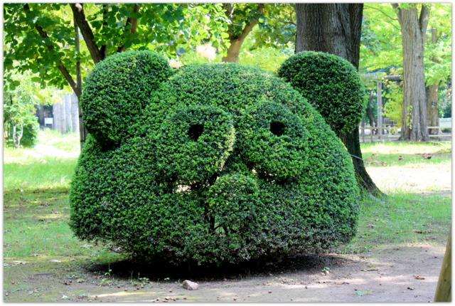 青森県 弘前市 弘前城 植物園 弘前公園 写真