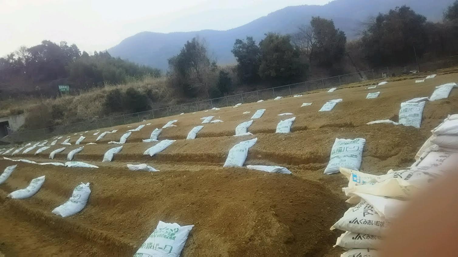 肥料及び土壌改良資材投入