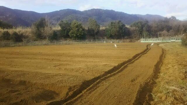 2016年開墾