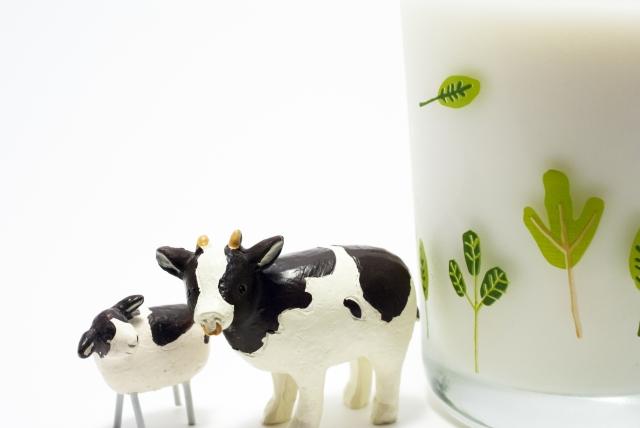 乳化剤 牛さん