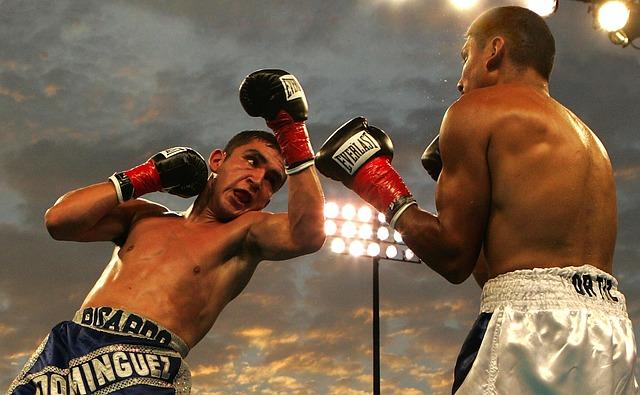 ボクシング 拳闘