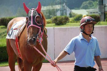 お馬の表情も良く見えます。