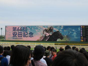 安田記念タイトル映像。