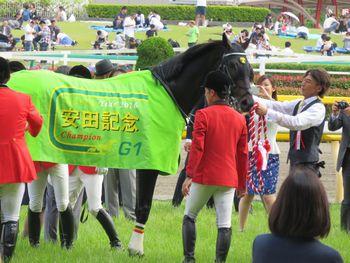 安田記念優勝馬の馬着!