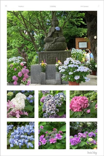 IMG_6151-kamakuraA.jpg