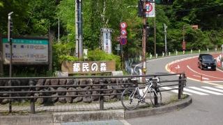 DSC00189_R.jpg