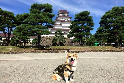 160808fukushima01.jpg