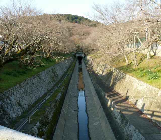 琵琶湖疎水6