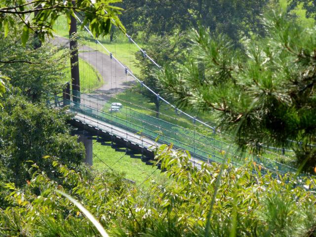 平成森林公園の吊橋4