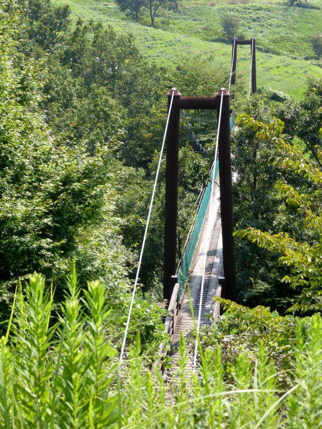 平成森林公園の吊橋5