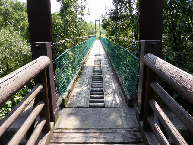 平成森林公園の吊橋1