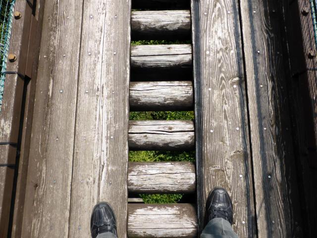 平成森林公園の吊橋2