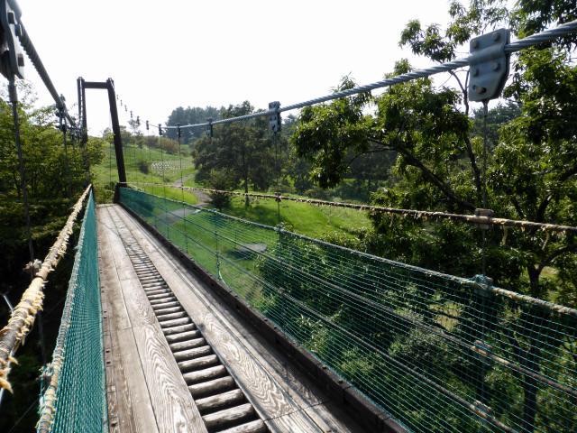 平成森林公園の吊橋3
