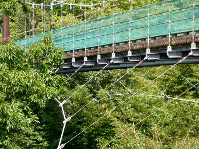 平成森林公園の吊橋9