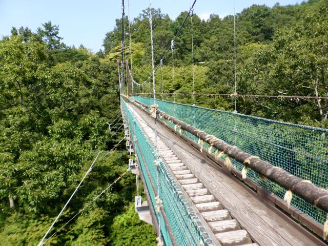 平成森林公園の吊橋7