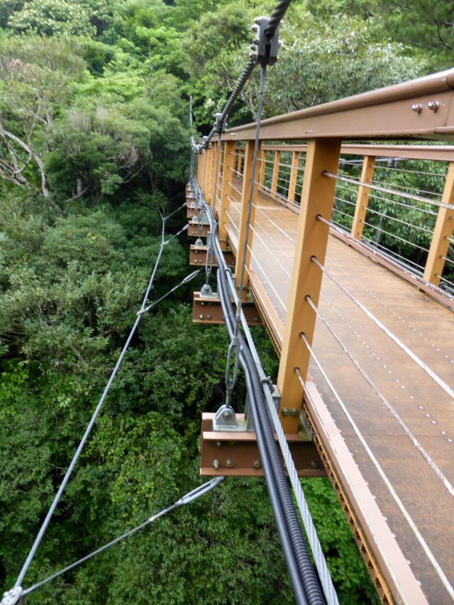 比地大滝つり橋8
