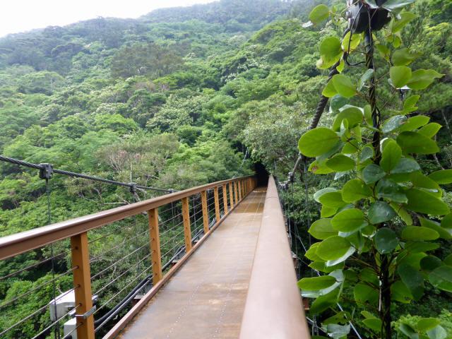 比地大滝つり橋9