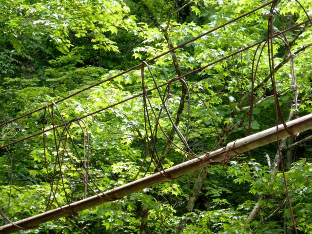 角楢吊橋16