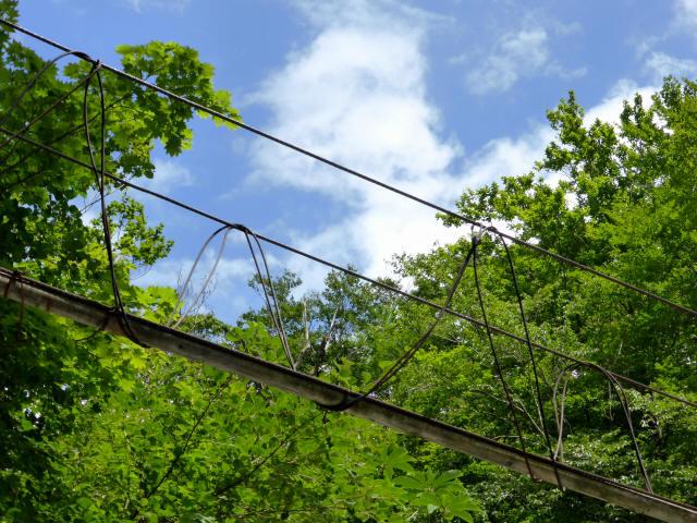 角楢吊橋19