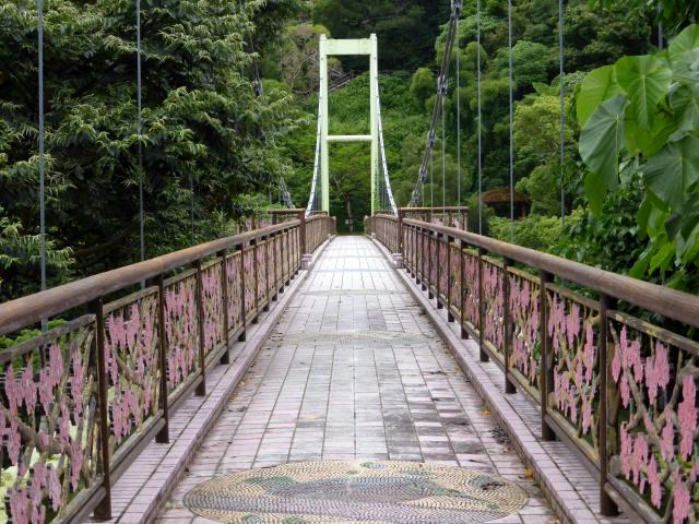 さくら橋14