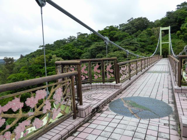 さくら橋15