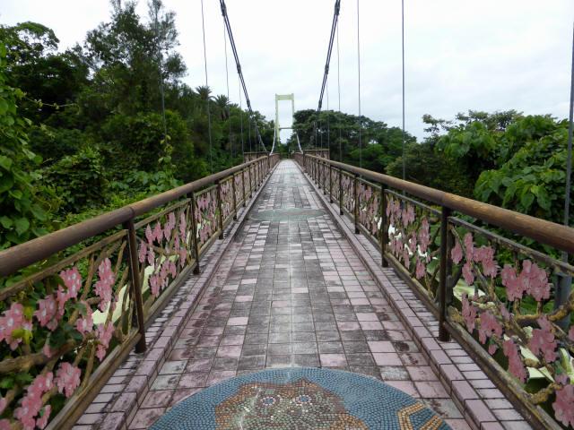 さくら橋22
