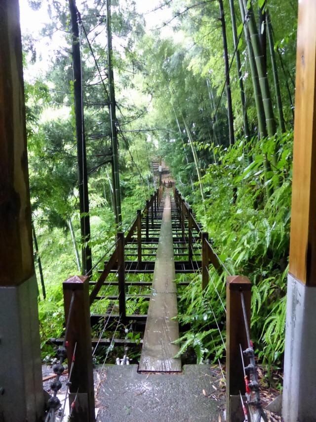 島田中央公園吊橋4