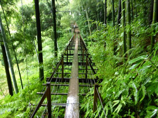 島田中央公園吊橋5