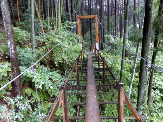 島田中央公園吊橋7