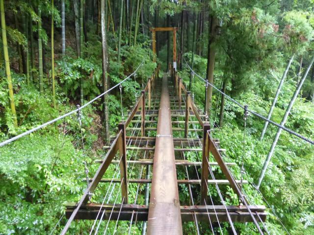 島田中央公園吊橋8