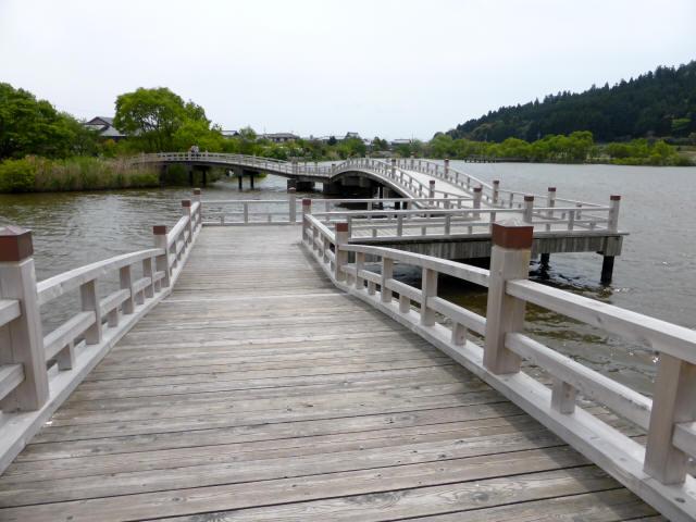 乙女ヶ池の太鼓橋05