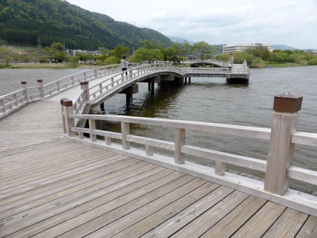 乙女ヶ池の太鼓橋09