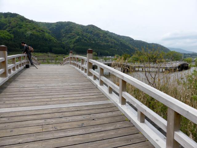 乙女ヶ池の太鼓橋10