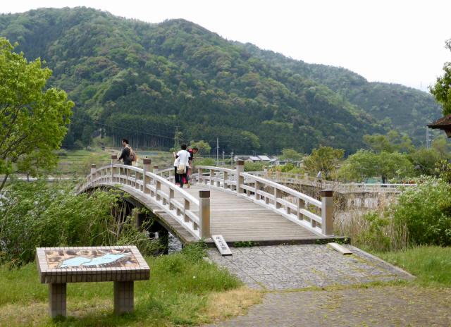 乙女ヶ池の太鼓橋11