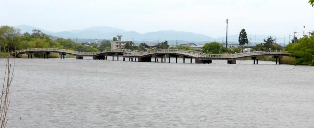 乙女ヶ池の太鼓橋12