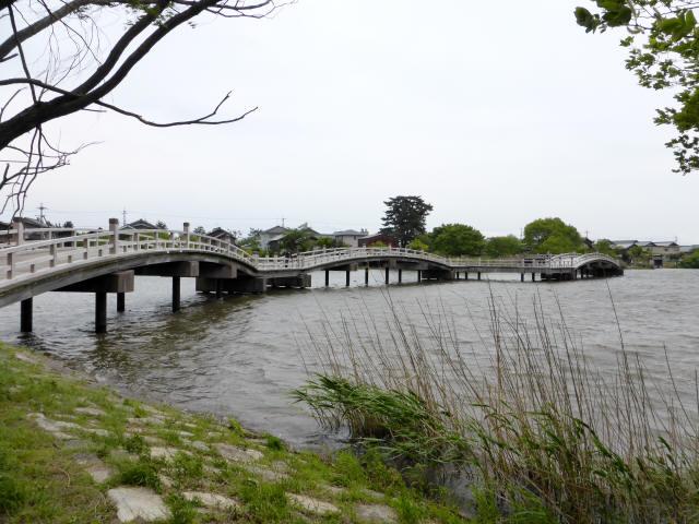 乙女ヶ池の太鼓橋13