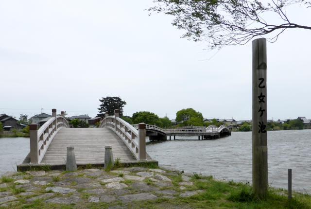 乙女ヶ池の太鼓橋14