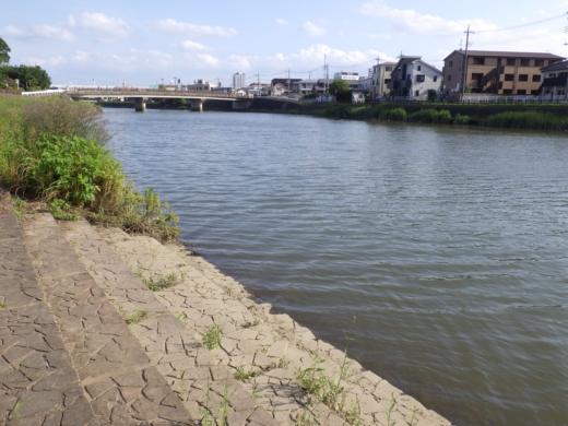 綾瀬川 (5)