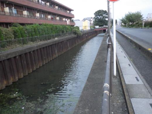 綾瀬川 (1)