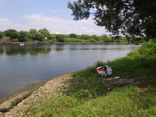荒川でボート (29)