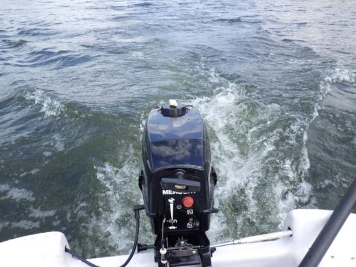 荒川でボート (58)