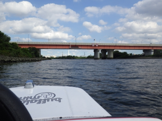 荒川でボート (57)