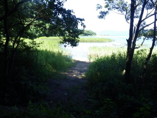 猪苗代湖 (13)