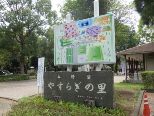 上野沼キャンプ場 (13)