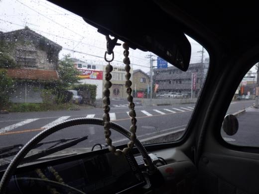 勝浦で磯遊び (3)