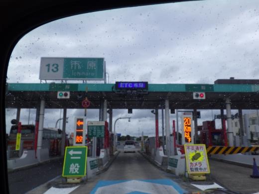 勝浦で磯遊び (7)