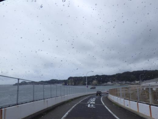 勝浦で磯遊び (12)
