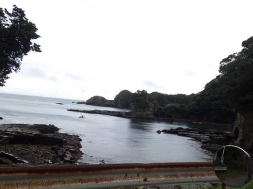 勝浦で磯遊び (14)